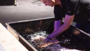 Testimony and Baptism of Nathan