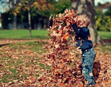 My Favorite Fall Family Traditions